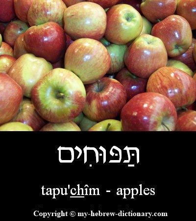 Apples in Hebrew