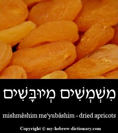 Apricots in Hebrew