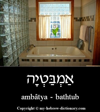 Bathtub in Hebrew
