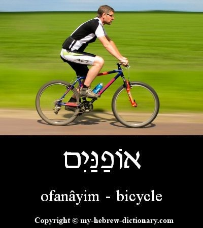 bicycle in Hebrew