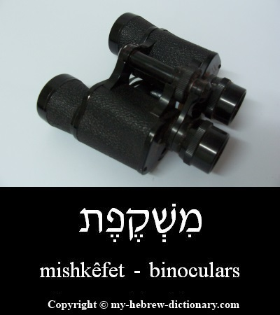 Binoculars in Hebrew