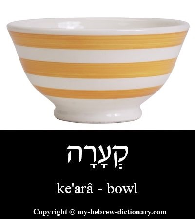 Bowl in Hebrew