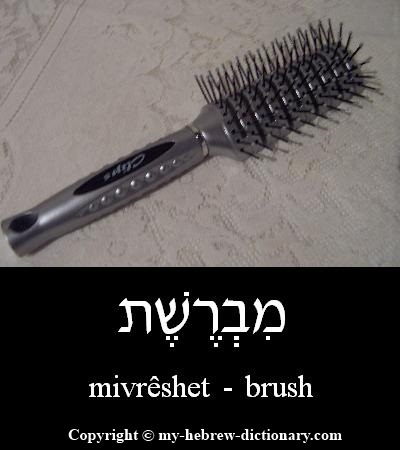 Brush in Hebrew