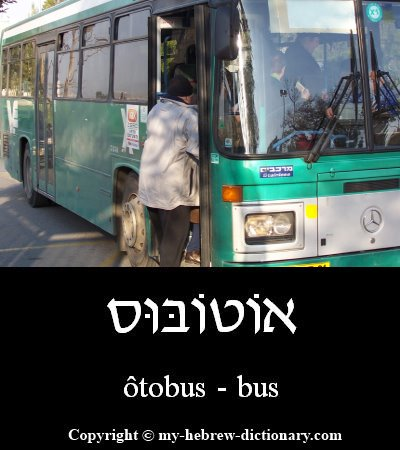 Bus in Hebrew