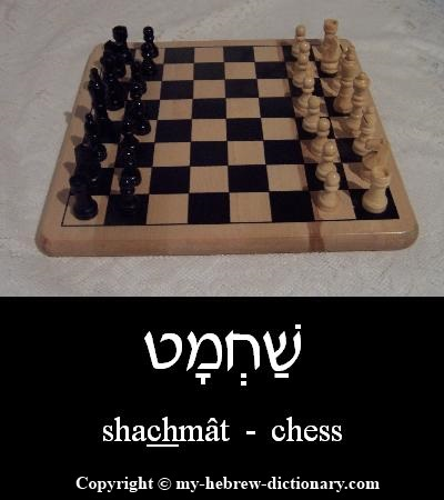 Chess in Hebrew