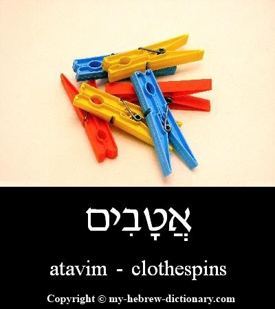 Clothespins in Hebrew