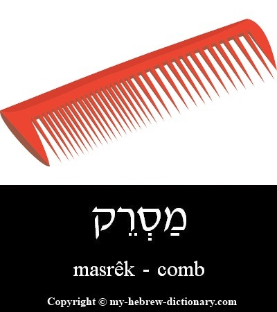 Comb in Hebrew
