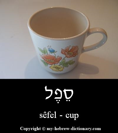 Cup in Hebrew