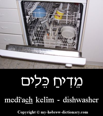 Dishwasher in Hebrew