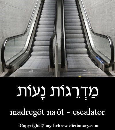 Escalator in Hebrew