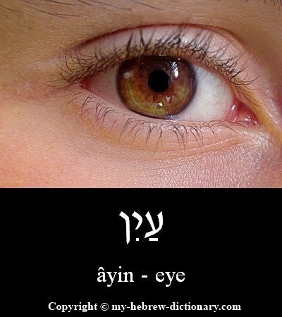 Eye in Hebrew