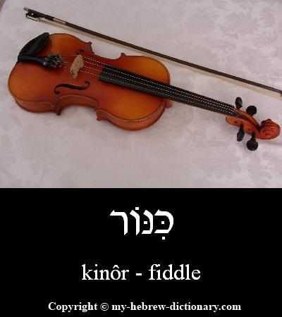 Fiddle in Hebrew