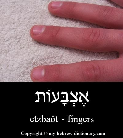Fingers in Hebrew