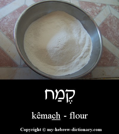 Flour in Hebrew