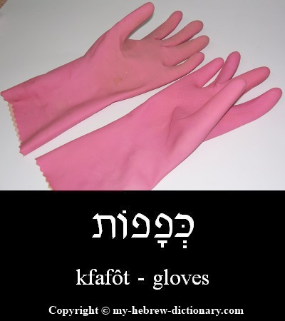 Gloves in Hebrew