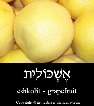 Grapefruit in Hebrew