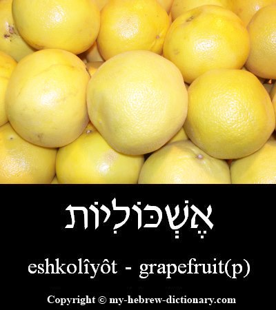 Grapefruits in Hebrew