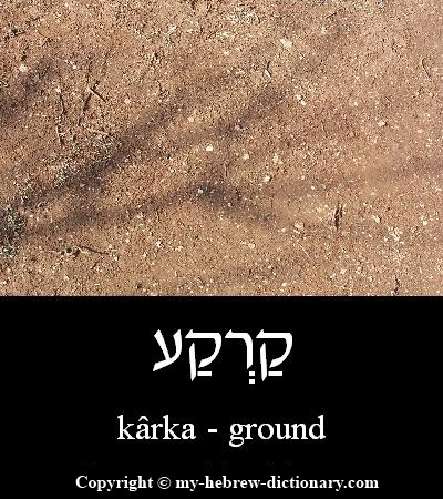 Ground in Hebrew