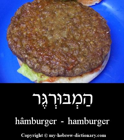 Hamburger in Hebrew