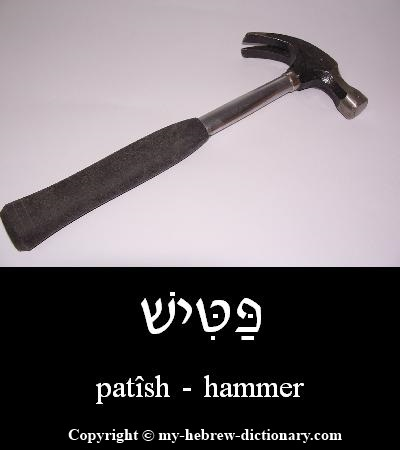 hammer in Hebrew
