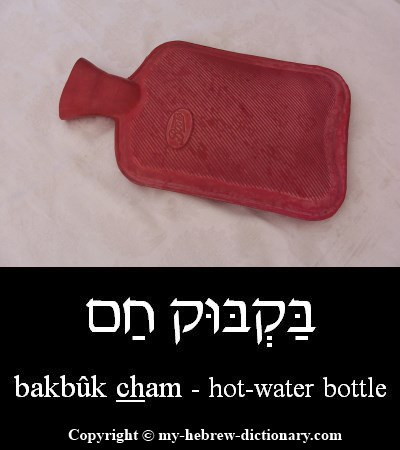 Hot-water bottle in Hebrew