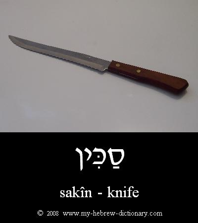 Knife in Hebrew