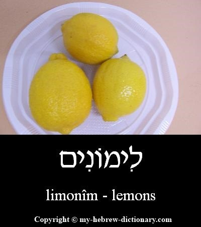 Lemons in Hebrew