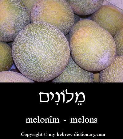 Melons in Hebrew