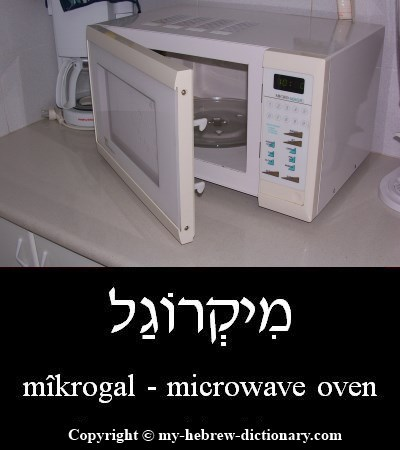 Microwave oven in Hebrew