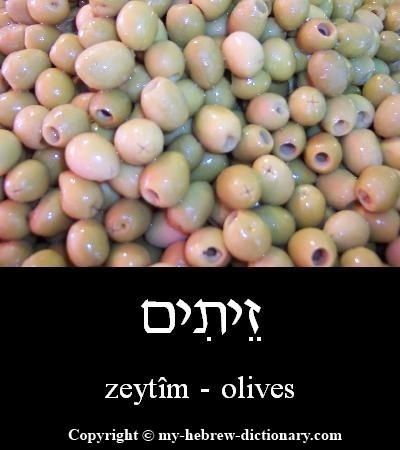 Olives in Hebrew