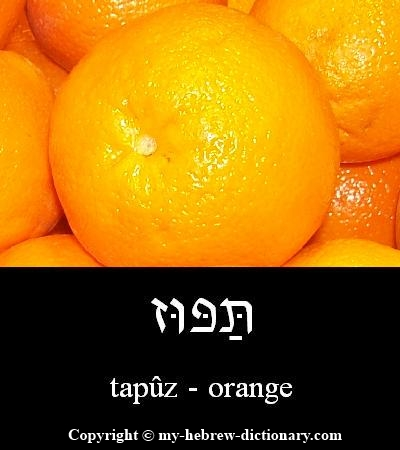 Orange in Hebrew