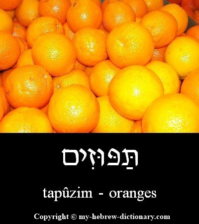 Oranges in Hebrew
