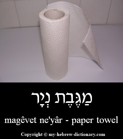 Paper towel in Hebrew