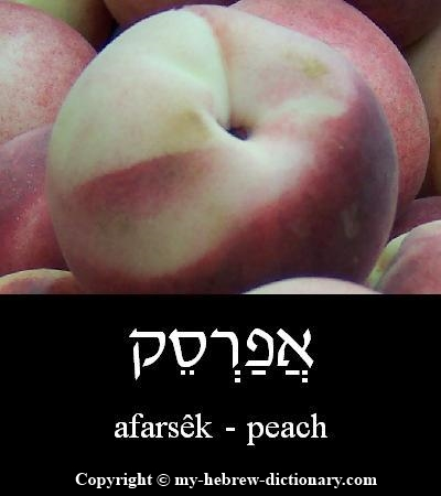 Peach in Hebrew