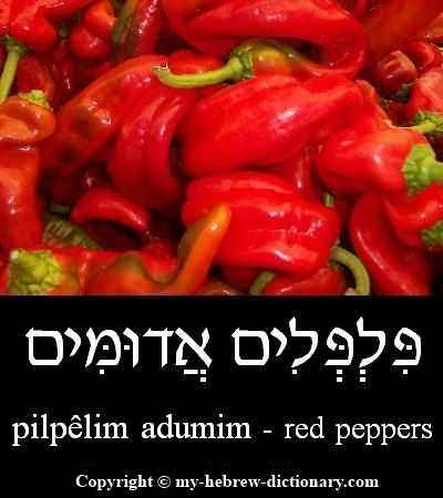 peppers in Hebrew