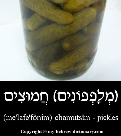 Pickles in Hebrew