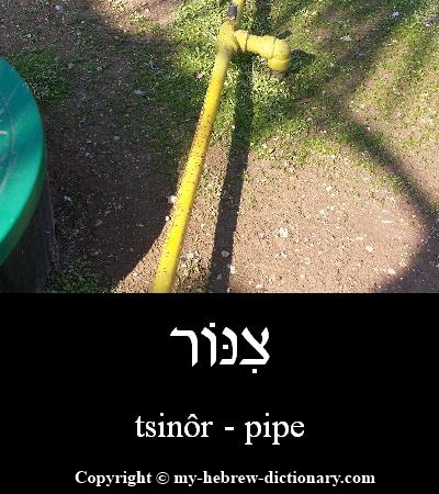 Pipe in Hebrew