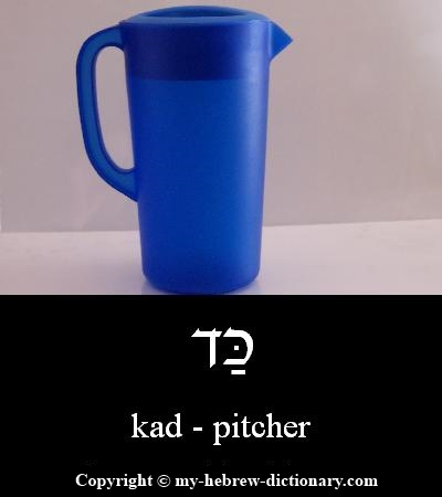 Pitcher in Hebrew
