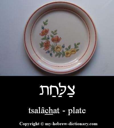 Plate in Hebrew