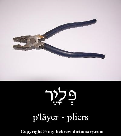 Pliers in Hebrew