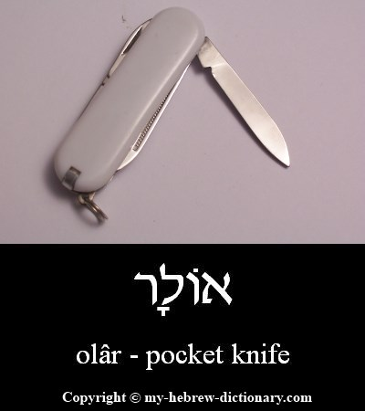 Pocket knife in Hebrew