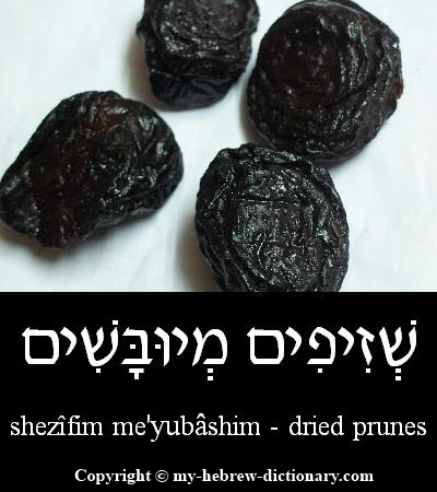 Prunes in Hebrew