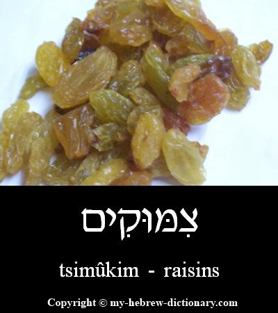 raisins in Hebrew