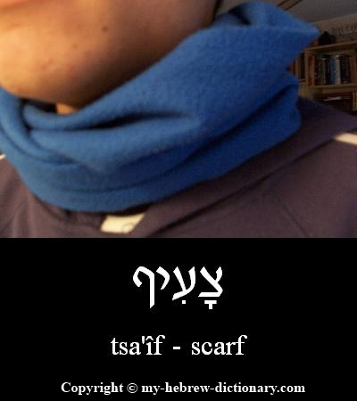 Scarf in Hebrew