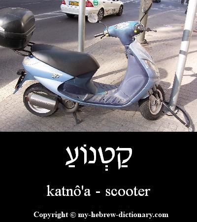 Scooter in Hebrew
