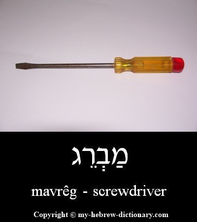Screwdriver in Hebrew