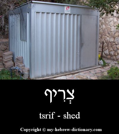 Shed in Hebrew