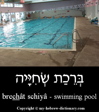 Swimming pool in Hebrew