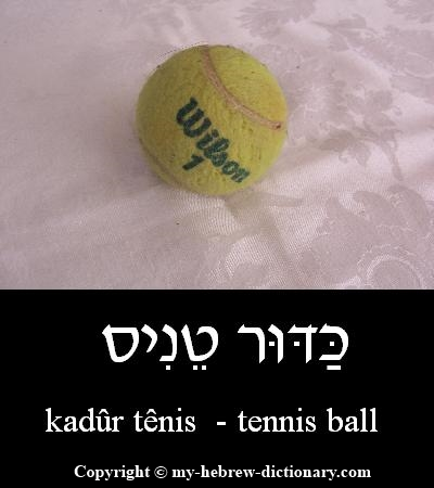 Tennis ball in Hebrew