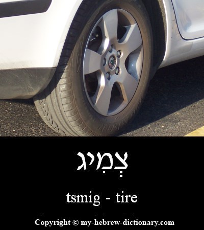 Tire in Hebrew